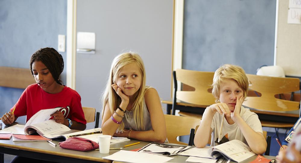 mindre bør, danskundervisning, danes worldwide