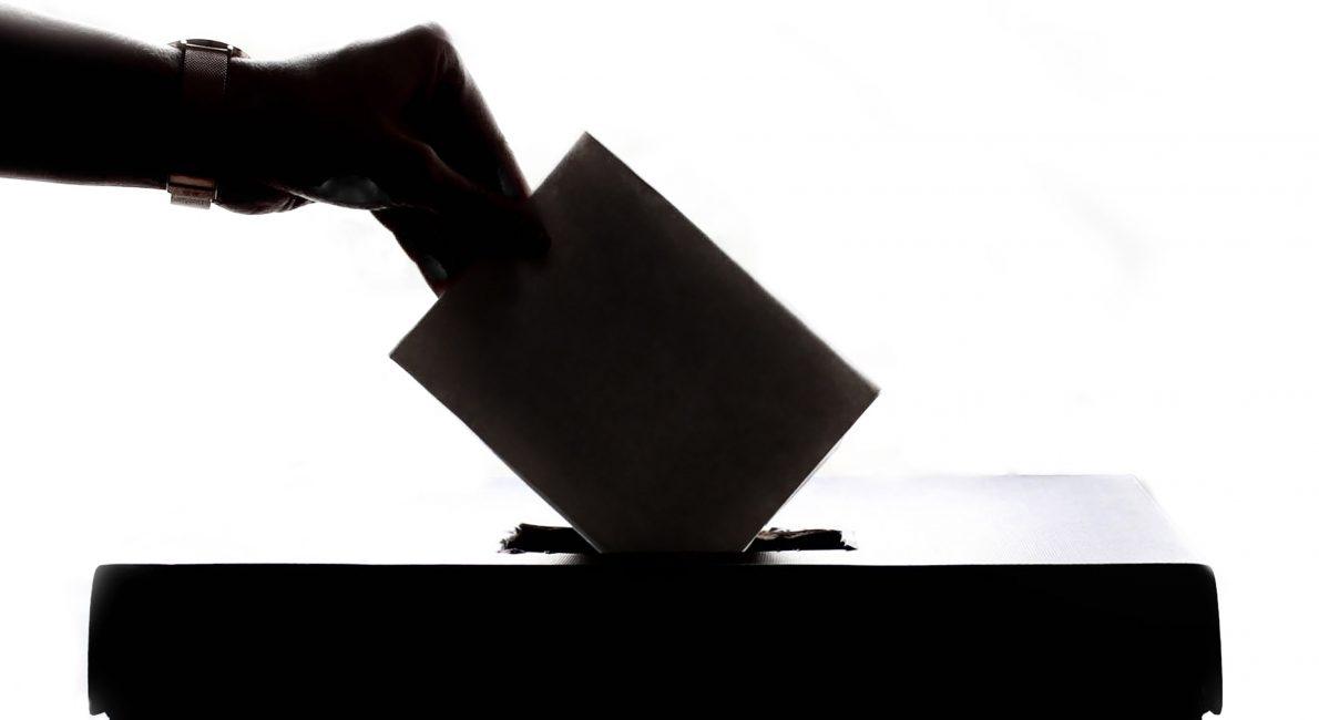 stemmeret, danes worldwide